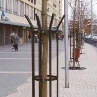 Arborex Tree Guard from Urban Effects