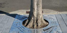 Kiwi Tree Grate