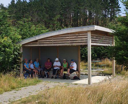 Arapuke Forrest Park-PNCC- Kiwi Shelter (5)