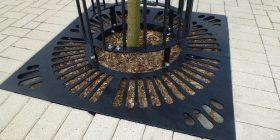 Kiwi Tree Grate 102